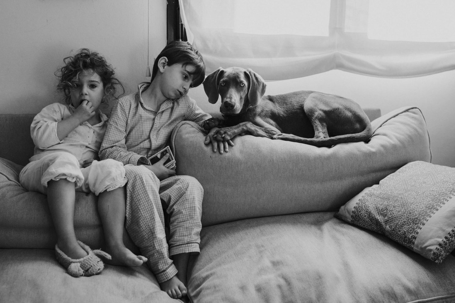 kids and their dog sat down on the couch during a family session in UK